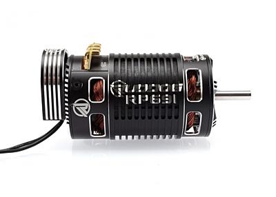 Ruddog RP691 2000KV 1/8 Sensored Competition Brushless Motor